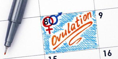 Cómo influye la ovulación en ti